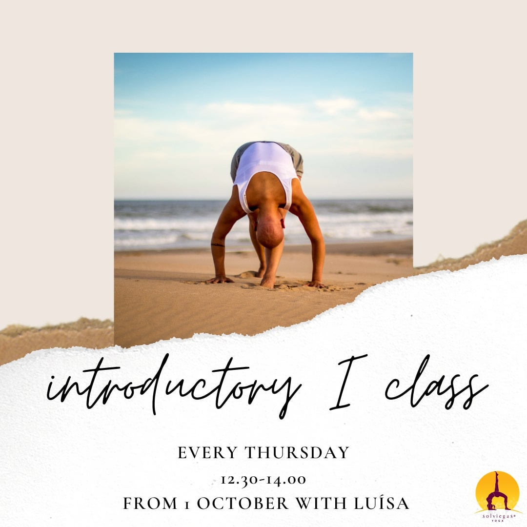 Introductory class at Sol Viegas Studio
